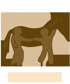 PFERT